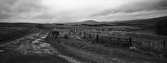 Scottish Borders. (christopherhogg1) Tags: chrishoggsphotos liddesdale newcastleton scotland road scottishborders winter landscape moorland hills
