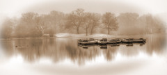 Olde Worlde Misty Hollow Pond (ArtGordon1) Tags: misty mistymorning hollowpond leytonstone london england uk winter february 2019 eppingforest davegordon davidgordon daveartgordon davidagordon daveagordon artgordon1 rowingboats boats reflections reflection