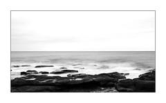 J'ai fait l'amer avec l'amour. (Scubaba) Tags: europe france pasdecalais noirblanc noiretblanc bw blackwhite mer sea rochers rocks