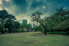 Bad weather in Tokyo (nicolasgirodon) Tags: japan japon tokyo travel posttreatment photography olympus amateurprotographer discovery weather landscape cityscape