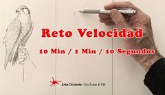 Reto Velocidad - 10 Minutos / 1 Minuto / 10 Segundos! (artedivierte) Tags: arte dibujo artedivierte reto boceto halcón tutto3 artistleonardo leonardopereznieto patreon tutorial