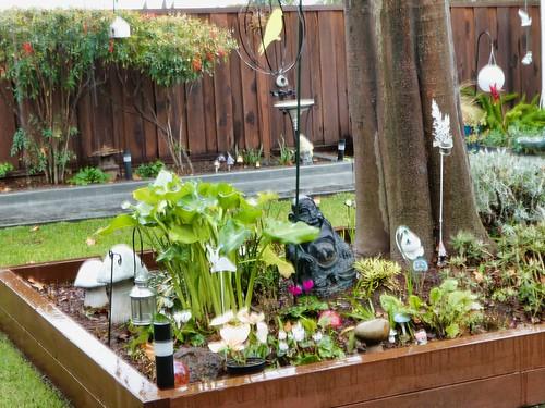 2019-01-06 - Landscape Photography, Rainy Backyard