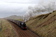 48151 1Z87 'The Cumbrian Coast Express' (Cumberland Patriot) Tags: lms london midland scottish railway br british rail stanier 8f 280 48151 steam locomotive engine 1z87 the cumbrian coast express charter passenger train railroad seascale links