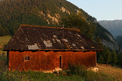 Rural Decline (Derbyshire Harrier) Tags: building wooden derelict abandoned rural transylvania piatracraiulinationalpark meadow forest dawn sunrise zărneştigorge magura romania barn naturetrek