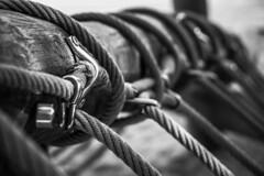 Ropes and harnesses (Jose Rahona) Tags: cuerdas ropes amarres moorings juntas joints bridas madera wood metal blancoynegro blackandwhite bw monochrome