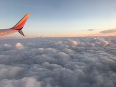 N8503A Pic 5 (atucker2976) Tags: n8503a boeing7378h4wl southwestflight3300 kmsyklax neworleanslosangeles msylax triptocaliforniaspringbreakmarch2019 baratarialouisiana clouds