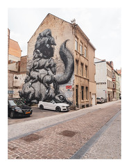 170726_134732_oly-PEN-f_oostende_the crystal ship 38/55 (A Is To B As B Is To C) Tags: aistobasbistoc b belgië belgium oostende ostend city cityscape urban fragment streetart graffiti thecrystalship roa animals rat pig squirl street car carpark house facade brickwork hofstraat platformstraat center olympus penf color