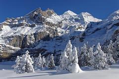 Blüemlisalp (Tjaldur66) Tags: winter peaks glacier winterwonderland rockface outdoor scenery swissmountains swissalps berneseoberland switzerland