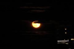 Reluctant Full Moon,Aberdeen_Feb 19_768 (Alan Longmuir.) Tags: grampian aberdeen misc sky moon reluctantfullmoon night
