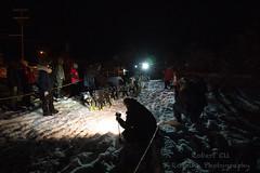 _ROS3391.jpg (Roshine Photography) Tags: dogs yukonquest dawson winter dogyard 36hourrestart huskies environmental yukonterritory snow dawsoncity yukon canada ca