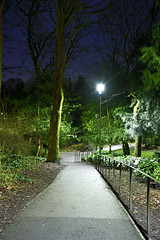 The Arboretum, Walsall 08/02/2019 (Gary S. Crutchley) Tags: arboretum park tree illumination uk great britain england united kingdom urban town townscape walsall walsallflickr walsallweb black country blackcountry staffordshire staffs west midlands westmidlands nikon d800 history heritage local night shot nightshot nightphoto nightphotograph image nightimage nightscape time after dark long exposure evening travel street slow shutter raw