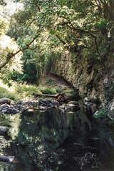 Goomagoroo Cave, 1993 (NettyA) Tags: 1993 australia goomagoroocave lamingtonnationalpark middleridgetraverse qld queensland westcanungracreek bushwalk bushwalking scannedprint scenicrim