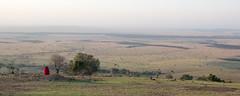 Balloons over the Masai Mara (Becky_Parkes) Tags: landscape africa mara balloon