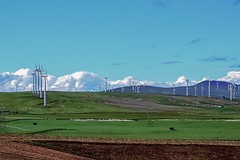 South of Goldendale, Washington. Wind turbines. (Platoesq) Tags: supervivid digitalphotography nikon nikonphotography cloudscapes clouds