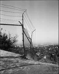 hilltop (ADMurr) Tags: la hilltop fence horizon fullframe fuji acros mamiya 7 80mm dab786