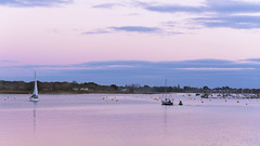 Sailing Home late on New Year's Day (skipnclick) Tags: chichester harbour itchenor siling boats winter moorings evening light pink soft open feel nikon d750 24120mm
