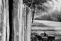Fence and bench (jaume zamorano) Tags: blackandwhite blancoynegro blackwhite blackandwhitephotography blackandwhitephoto bw catalunya d5500 fence lleida monochrome monocromo nikon noiretblanc nikonistas pov street streetphotography streetphoto streetphotoblackandwhite streetphotograph urban urbana