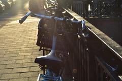 DSC_0662 (elisa.savio) Tags: amsterdam trip travel voyage landscape bike photographer nikkor nikon