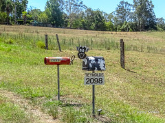 Quirky mailboxes - Cow and fire extinguisher near Beechwood, NSW, Australia (Jenny Stokes Melbourne) Tags: animal australia australian heritage landscape letterbox mailbox summer