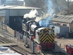 On Shed at Churston (2) - 14 February 2019 (John Oram) Tags: churston dartmouthsteamrailway brstandardclass4 braveheart 75014 7800class 7827 lydhammanor class03 shunter d2192 titan 2003p1090709r