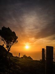 Makara Sunset-2 (Lyndon (NZ)) Tags: 2018 newzealand nz ilce7m2 sony sunset nature outdoors ocean water sea silhouette colour wellington