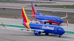 N8683D Boeing 737-800 and N290WN 737-700 Southwest (SamCom) Tags: swa southwest southwestairlines 737 boeing 737700 kdal dal dallaslovefield lovefield n8683d 737800 n290wn