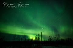 190306160833-4677 (shannbil (Signature Exposures)) Tags: aurora auroraborealis aurorahunters finland esaevents