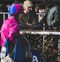 DSC_0674 (fullerton42) Tags: straftford racecourse stratfordracecourse horse horses racehorse horseracing race punter punters specatators sport equine england