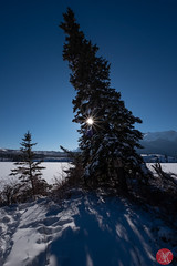 Roadtrip 14 (Kasia Sokulska (KasiaBasic)) Tags: canada alberta winter rockies travel mountains nature jasper np landscape