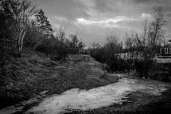 Underwood Rd (Esaú Alberto Canto Novelo) Tags: viaje windsor canada traveling abroad blackandwhite bw outside outdoor woods trail ice nature landscape snow winter