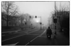 Ochtend (Hans Heemsbergen) Tags: hansheemsbergen haarlem station fiets mist ochtend
