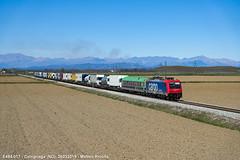 RoLa Domo II - Novara Boschetto (_matteorivolta) Tags: train merci freight treno rola autostrada viaggiante caltignaga novara domodossola montagne cielo sereno azzurro landscape