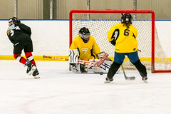 DSC_4292.jpg (Flickr 4 Paul) Tags: chillerdublin hornets pondhockey