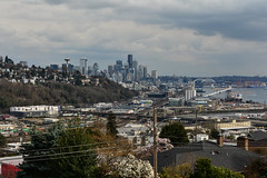 Early Spring Seattle Views 5 (C.M. Keiner) Tags: seattle washington usa city cityscape skyline mountains pacific northwest puget sound spring trees blossoms urban magnolia streetscape cherry
