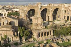 DSC07300 (Triin Olvet) Tags: fororomano itaalia palatino rome rooma