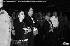 2019 Bosuil-Het publiek bij Steady State en The Animals 16-ZW