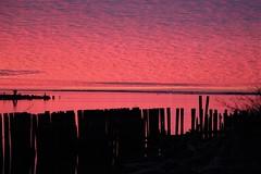 Gray's Harbor in Red (Mïk) Tags: graysharbor aberquiam aberdeenwa hoquiamwa washington notheotherwashington harborveiwingtower