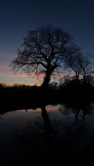 almost twice the view (simon edge) Tags: nikon d5100 sunset silhouette sky msice stitched