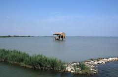 Abbandono - Abandonment (Roberto Marinoni) Tags: abbandono abandonment bellitalia po fiumepo rivercasonepo della donzella delta ferrara
