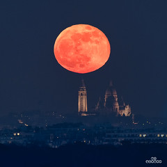 From Esclipse to Super Moon (brenac photography) Tags: d850 europe nikon nikond850 brenac brenacphotography france sigma saintcloud îledefrance fr