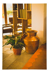 Copper Vase and Potted Plant - Still Life_Web 1_Scaled-X (johann.kisaame) Tags: architecture books copper interiordesign nepal plants pottery resorts stilllife sunlight vase
