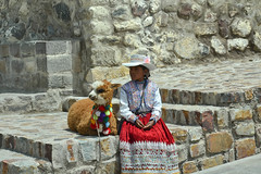 Maca, Perú (Dunae88) Tags: peru niña children alpaca peruana maca colca valledelcolca