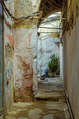 Entrance (Mike Schaffner) Tags: cuba entrance entryway plant vase lahabanavieja havana cu