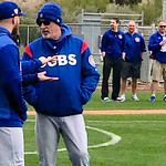 Cubs Spring Training 2019 Gallery 1