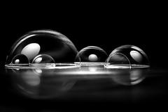 La formación de un nuevo mundo I (Osruha) Tags: pompasdejabón burbujas bombolles bubbles mundo mon world blancoynegro blancinegre blackandwhite bw bn bnw nikon nikonistas nikond750 d750 monocromo monocrom monochrome