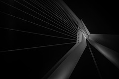 Erasmusbrug II (s.W.s.) Tags: rotterdam netherlands erasmusbrug bridge abstract architecture architectural city urban blackandwhite lines black holland nikon lightroom