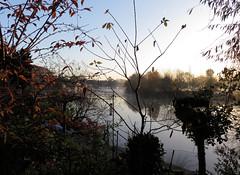 2017-11-17 | 01 | misty (Mark & Naomi Iliff) Tags: river thames caversham sunrise dawn mist