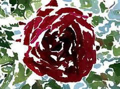 Gelobet sei die Pein (amras_de) Tags: rose rosen ruža rosa ruže rozo roos arrosa ruusut rós rózsa rože rozes rozen roser róza trandafir vrtnica rossläktet gül blüte blume flor cvijet kvet blomst flower floro õis lore kukka fleur bláth virág blóm fiore flos žiedas zieds bloem blome kwiat floare ciuri flouer cvet blomma çiçek zeichnung dibuix kresba tegning drawing desegnajo dibujo piirustus dessin crtež rajz teikning disegno adumbratio zimejums tekening tegnekunst rysunek desenho desen risba teckning çizim