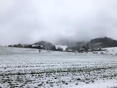 Regnerischer Wintertag (im Nebel ist der Sendeturm Bantiger zu erkennen) (Martinus VI) Tags: bantiger winter januar january janvier kanton de canton bern berne berna berner bernese schweiz suisse suiza switzerland svizzera swiss y190113