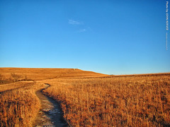 Konza Prairie, 5 Jan 2019 (photography.by.ROEVER) Tags: kansas rileycounty konzaprairie prairie tallgrassprairie flinthills hills landscape outside rural trail trails hikingtrail afternoon bluesky blueskies january 2019 january2019 roadtrip usa